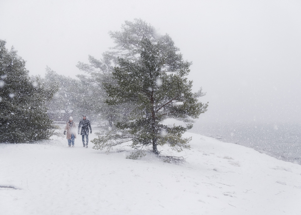Walking, snow, sweden, sandhamn,