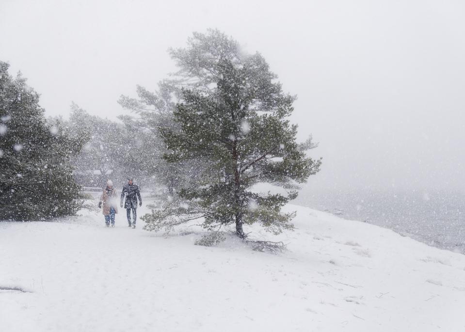 Walking, snow, sweden, sandhamn,