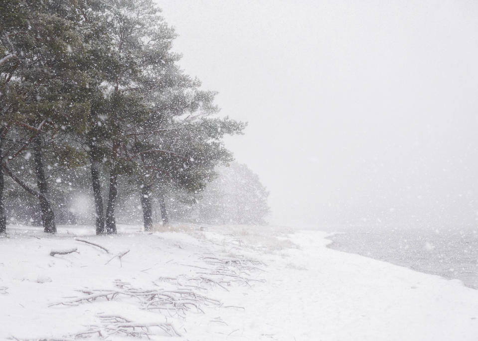 Sandhamn snow